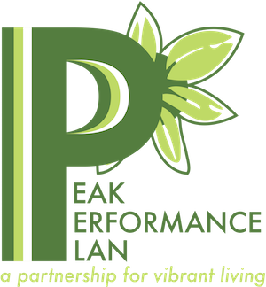 Peak Performance Plan 2 Nutritionist Dietitian Weight Loss